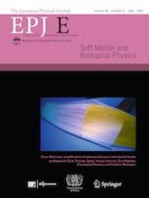 European Physical Journal E