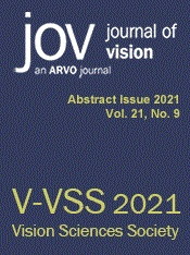 Journal of Vision